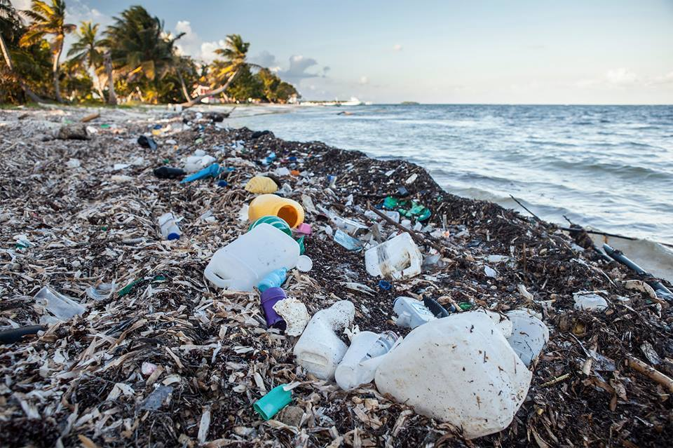 Далай, тэнгисийн усанд жил бүр 5-13 сая тонн хуванцар хог хаягддаг